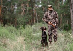chasse avec fusil et chien